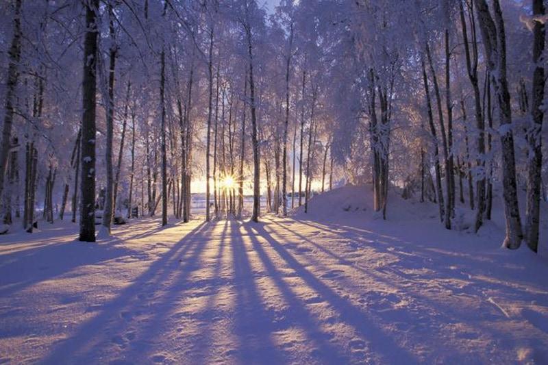 Lees meer over Winter actie 10% korting!